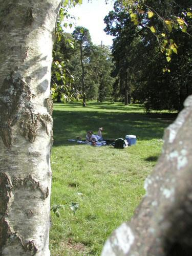 2004-09-03_Ruths_Birthday_0006.jpg