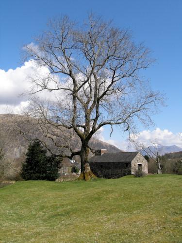 2006-04-21_Lochaline_Trip_0001.jpg