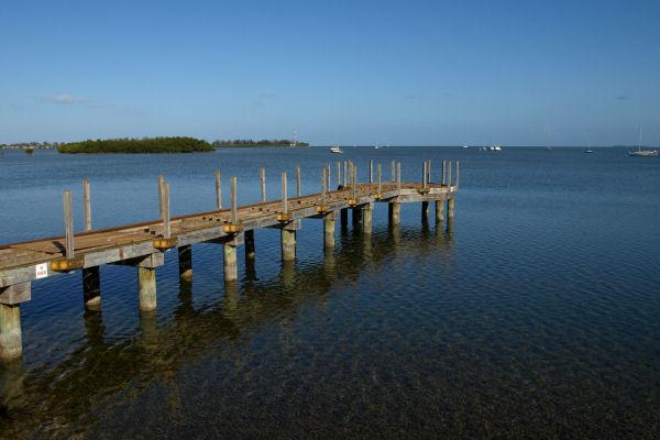 2009-03-13_Florida_0029.jpg