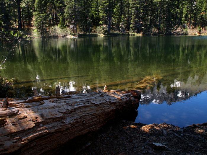 2009-05-23_Lake_Tahoe_0031.jpg