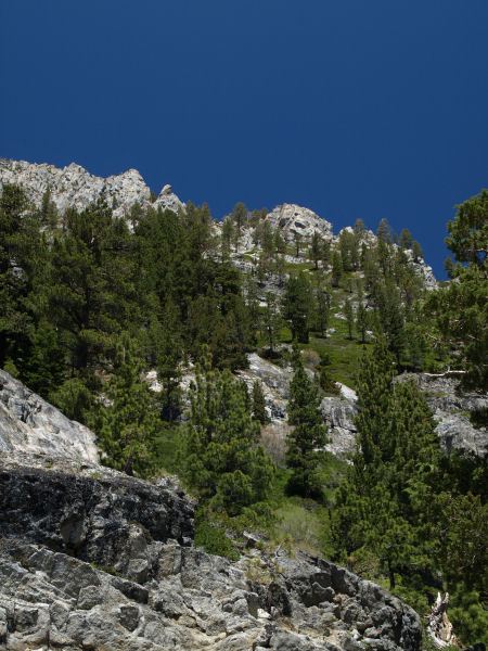 2009-05-23_Lake_Tahoe_0073.jpg