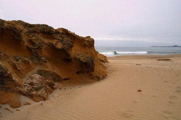 2009-05-30_Pacific_Coast_0003.jpg