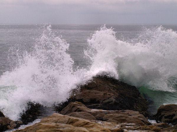 2009-05-30_Pacific_Coast_0009.jpg