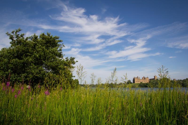 2013-07-14 Linlithgow_0024.jpg