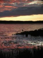 2004-06-23_Gull_Lake_Minnesota_0005.jpg