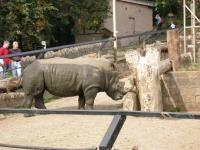 2005-09-03_Ruths_Birthday_-_Zoo_0015.jpg