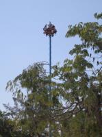 2007-04-19_Mexico_0121.jpg