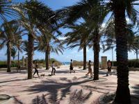 2009-03-13_Florida_0004.jpg