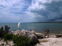 2009-03-13_Florida_0108.jpg