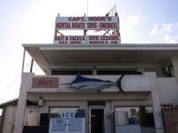 2009-03-13_Florida_0137.jpg