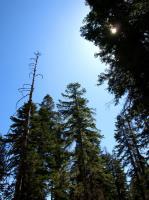 2009-05-23_Lake_Tahoe_0008.jpg