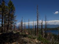 2009-05-23_Lake_Tahoe_0041.jpg