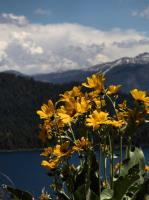 2009-05-23_Lake_Tahoe_0043.jpg
