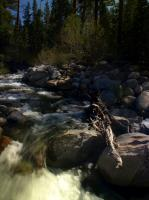 2009-05-23_Lake_Tahoe_0049.jpg