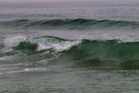2009-05-30_Pacific_Coast_0006.jpg