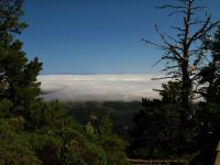 2009-07-03_Mount_Tamalpais_0018.jpg