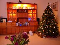 2009-12-24_Balbirnie_Christmas_0077.jpg