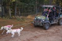 2011-11-20_Sled_Dogs_0030.jpg