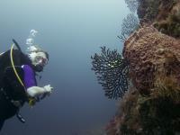 2012-04-11 St Lucia_0142.jpg